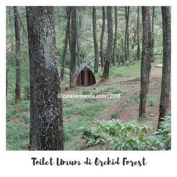 Bentuk Toilet Umum di Orchid Forest Cikole Lembang