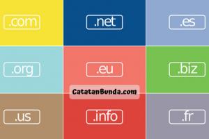 tips memilih nama domain untuk sebuah website - catatan bunda 2020